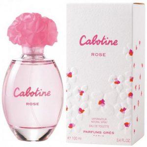 אונליין   100 '' Gres Cabotine Rose