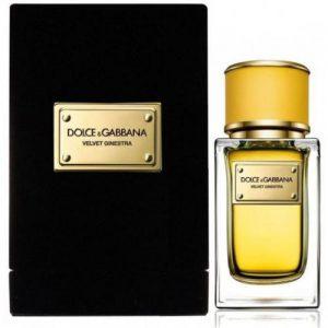 אונליין   150 '' Dolce & Gabbana Velvet Ginestra    E.D.P